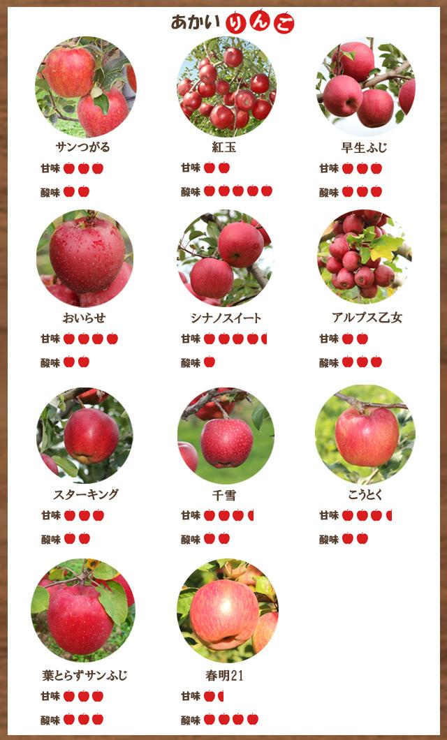 赤いりんご一覧
