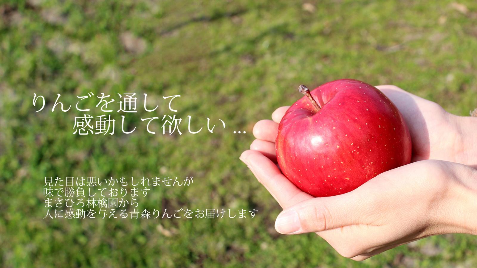 りんごを通して感動してほしい…見た目は悪いかもしれませんが、味で勝負しております。まさひろ林檎園から人に感動を与える青森りんごをお届けします。
