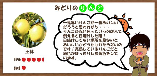 緑のりんご一覧