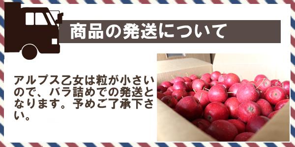 商品の発送について アルプス乙女は粒が小さいので、バラ詰めでの発送となります。予めご了承下さい。