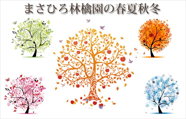 まさひろ林檎園の春夏秋冬