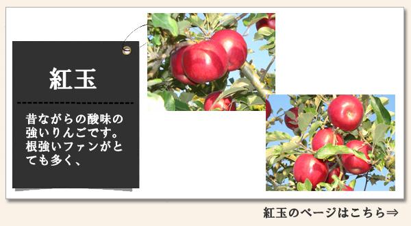 紅玉 昔ながらの酸味の強いりんごです。根強いファンがとても多く、スイーツにはかかせません。