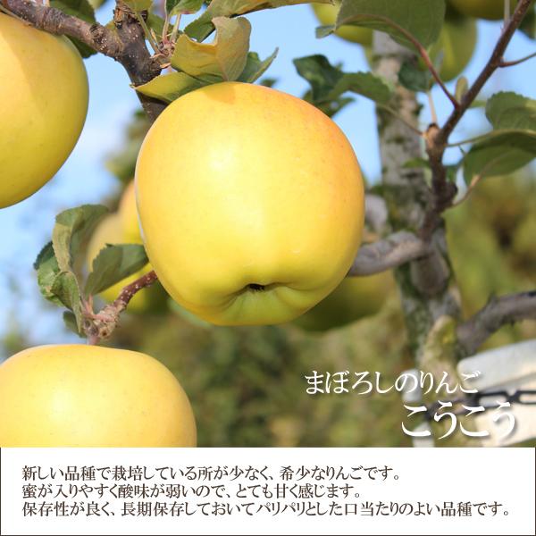 まぼろしのりんご こうこう 新しい品種で栽培している所が少なく希少なりんごです。蜜が入りやすく酸味が弱いので、とても甘く感じます。保存性が良く、長期保存しておいてもパリパリとした口当たりのよい品種です。