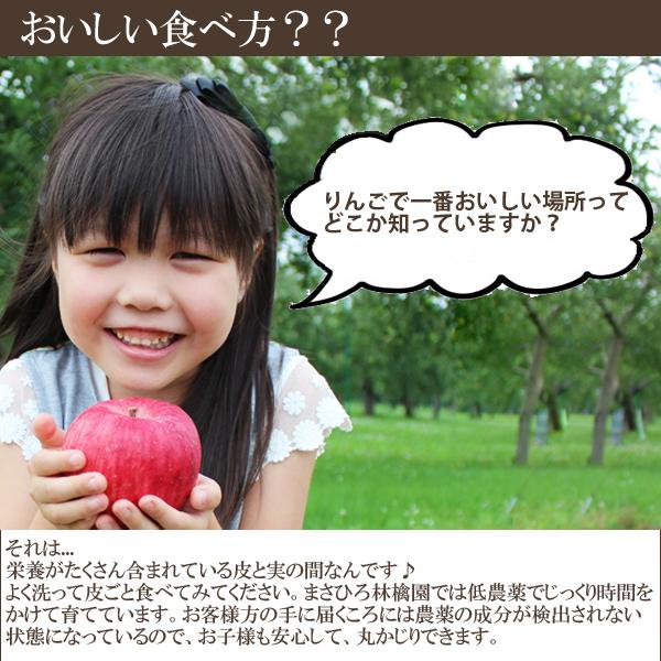 りんごで1番おいしい場所を知っていますか?それは...栄養がたくさん含まれている皮と実の間なんです♪よく洗って皮ごと食べてみてください。まさひろ林檎園では低農薬でじっくり時間をかけて育てています。お客様方の手に届くころには農薬の成分が検出されない状態になっているので、お子様も安心して、丸かじりできます。