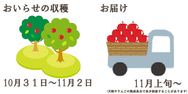 おいらせの収穫は10月初旬〜お届けは11月中旬〜を予定しております。(天候やりんごの熟成具合で多少前後することがあります)