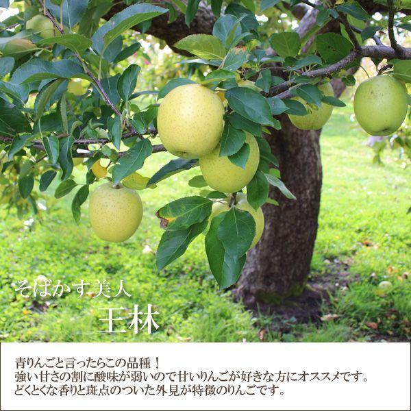 そばかす美人 王林 青りんごと言ったらこの品種!強い甘さの割に酸味が弱いので、甘いりんごが好きな方にオススメです。どくとくな香りと斑点のついた外見が特徴のりんごです。