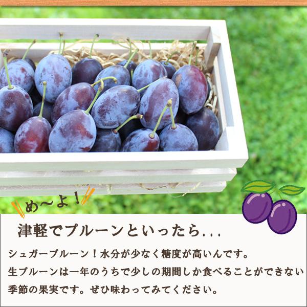 め?よ!津軽でプルーンと言ったら...シュガープルーン!水分が少なく、糖度が高いんです。生のシュガープルーンは一年のうちで少しの期間しか食べることができない季節の果物です。ぜひ味わってみてください。