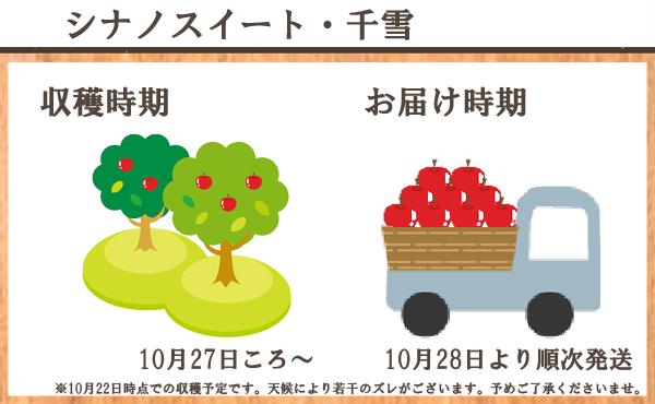 シナノスイート・千雪 収穫時期/10月27日ころ~ お届け時期/10月28日より順次発送 ※10月22日時点での収穫予定です。天候により若干のズレがございます。予めご了承くださいませ。
