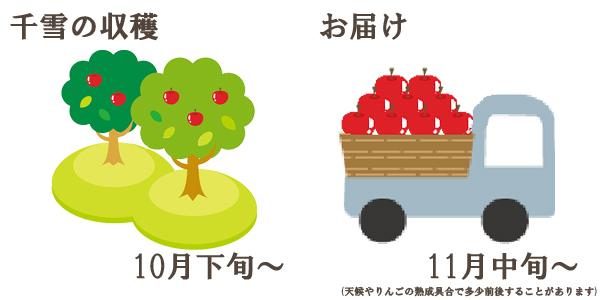千雪の収穫は10月下旬〜お届けは11月上旬〜を予定しております。(天候やりんごの熟成具合で多少前後することがあります)