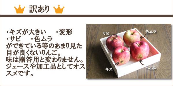 訳あり ・キズが大きい・変形・色むら(赤い色が少ない)・蔓割れ等のあまり見た目が良くないりんご。味は贈答用と変わりません。ジュースや加工品としてオススメです。
