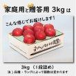 画像3: 有袋ふじ 家庭用 3kg (3)