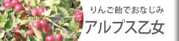 りんご飴でおなじみ アルプス乙女