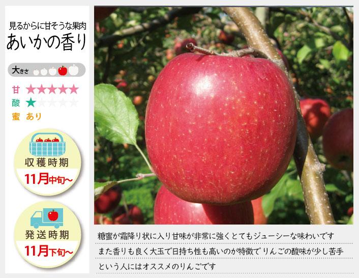 あいかの香りは、糖蜜が霜降り上に入り甘味が非常に強くとてもジューシーなりんごです。香りもよく大玉で日持ちがよいのが特徴です。あいかの香りの収穫は11月中旬〜お届けは11月下旬〜を予定しております。(天候やりんごの熟成具合で多少前後することがあります)