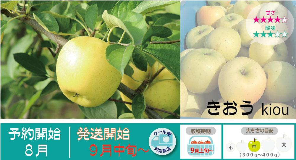 きおうは、ほとんど酸味がなく酸っぱさが苦手な方にはとても食べやすく歯ざわりがよくて食感を楽しめるりんごです。 きおうの収穫は9月上旬〜お届けは9月中旬〜を予定しております。(天候やりんごの熟成具合で多少前後することがあります)