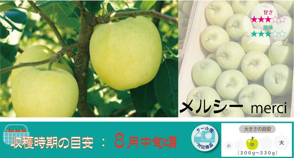 極早生種という とっても早い時期から収穫できるりんごの品種。メルシーは極早生種としては珍しく甘さがあってとってもジューシー!明黄色で爽やかな食感が魅力のりんごです。 メルシーの収穫は8月中旬〜お届けは8月下旬〜を予定しております。(天候やりんごの熟成具合で多少前後することがあります)