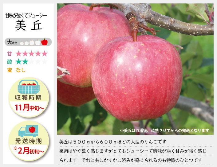 美丘は、500~600gの大型のりんごです。果肉はやや粗く感じますがとてもジューシーで酸味が弱く甘味が強く感じられます。美丘の収穫は11月中旬〜お届けは12月上旬〜を予定しております。(天候やりんごの熟成具合で多少前後することがあります)