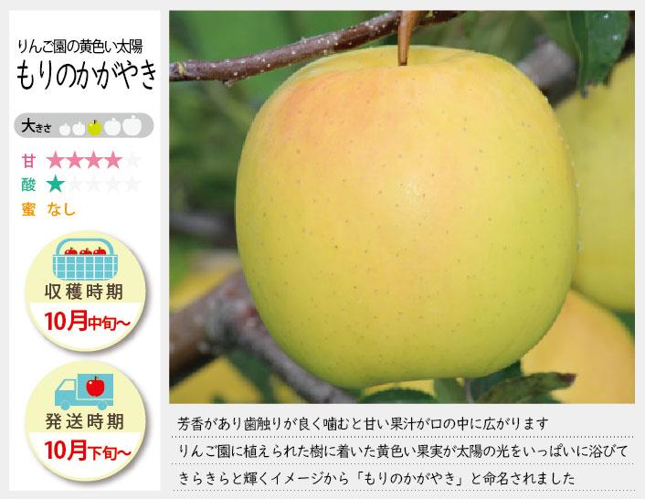 もりのかがやきは、芳香があり歯触りが良く噛むと甘い果汁が口の中に広がります。もりのかがやきの収穫は10月中旬〜お届けは10月下旬〜を予定しております。(天候やりんごの熟成具合で多少前後することがあります)