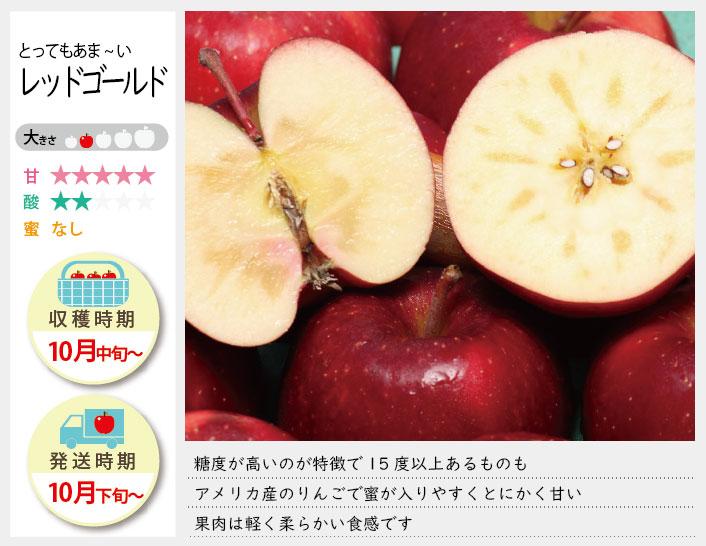 レッドゴールドは、糖度が高いのが特徴で15度以上あるものも。アメリカ産のリンゴで蜜が入りやすくとにかく甘い!果肉は軽く柔らかいです。レッドゴールドの収穫は10月中旬〜お届けは10月下旬〜を予定しております。(天候やりんごの熟成具合で多少前後することがあります)