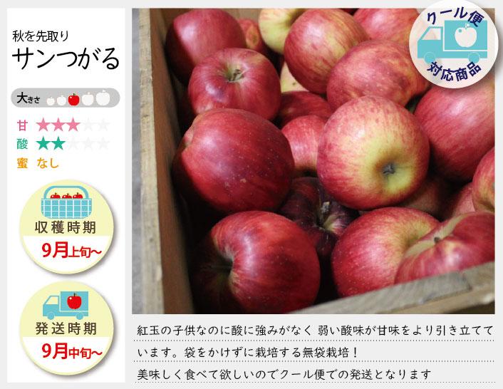 サンつがるは、袋をかけずに栽培する無袋栽培!甘味とビタミンCが豊富です。甘味は強め若干の酸味があり果汁は多めのりんごです。 サンつがるの収穫は9月上旬〜お届けは9月中旬〜を予定しております。(天候やりんごの熟成具合で多少前後することがあります)