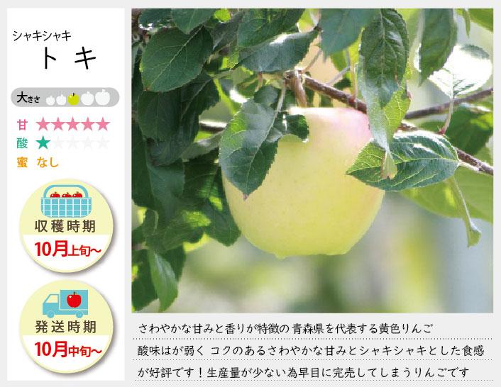 トキは酸味はが弱く コクのあるさわやかな甘みとシャキシャキとした食感が好評です! トキの収穫は10月上旬〜お届けは10月中旬〜を予定しております。(天候やりんごの熟成具合で多少前後することがあります)